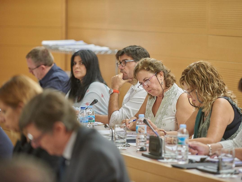 Foto grupo Podemos Cabildo de Tenerife (Pleno 27 octubre 2017)