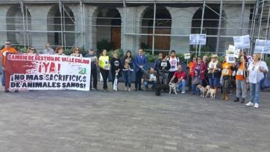 cambio gestion valle colino, protesta cabildo con grupo podemos tenerife (noviembre2017)