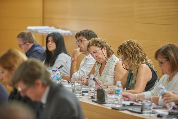 Grupo Podemos Cabildo Tenerife en pleno